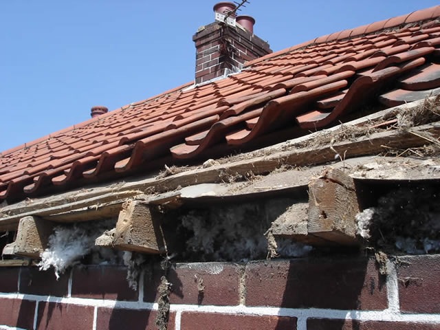 Step 1 | Remove existing soffit boards during roofline installation process
