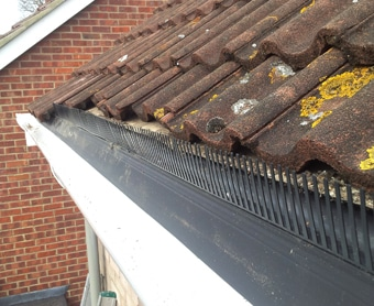 High Quality A Birdu0027s Roofline Nest Is Prevented By Fitting A Bird Comb